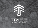 Tribe Small Group Training